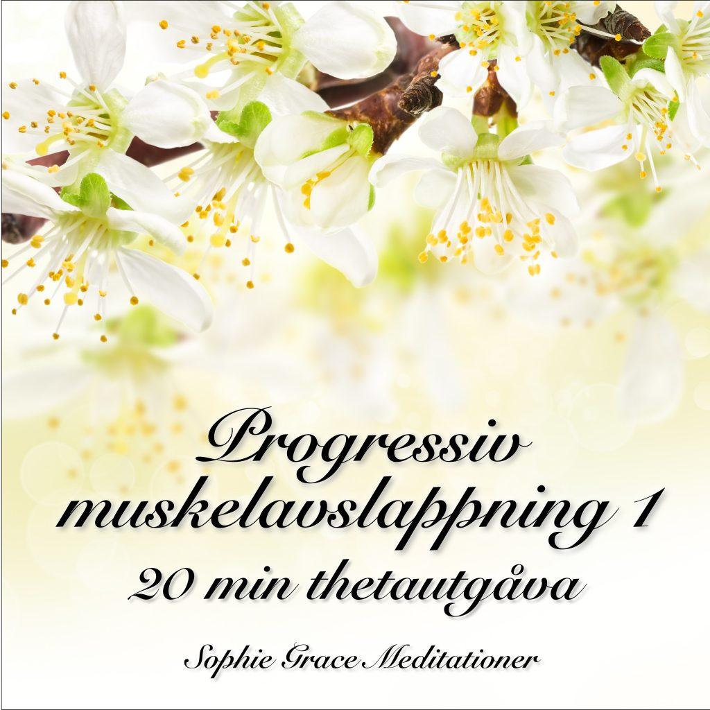 Omslagsbild för Progressiv muskelavslappning 1: 20 min thetautgåva